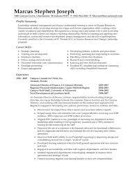 resume  examples of summary  corezume coresume