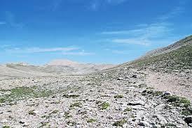 prodromo della flora di palena (regione abruzzo, parco nazionale ...