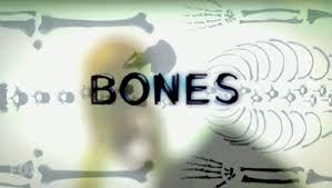 <b>Bones</b> (TV series) - Wikipedia