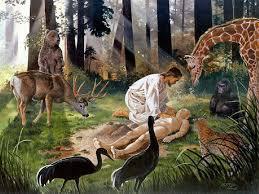Resultado de imagem para imagens da origem da vida na visão da bíblia