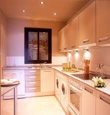 Contemporary Galley Kitchen Modern Galley Kitchen Designs Layouts 2planakitchen