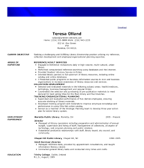 functional resume template example resume template functional