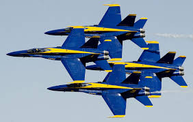 Image result for picture of the blue angels