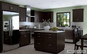 cabinets ikea kitchen cabinet home design interior design photos amusing ikea akurum kitchen cabinets