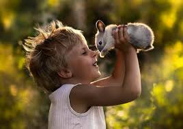Картинки по запросу картинки діти  дивляться бачать чують тварини