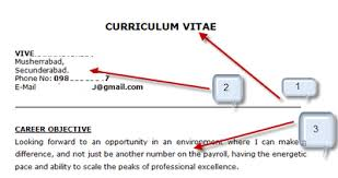 career objective 4 mention your professional qualification 5 mention your technical skills sample java resume what to write in career objective for a resume