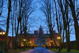 outdoor christmas lighting ideas. multi coloured tree lights outdoor christmas lighting ideas