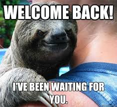 Welcome back! I've been waiting for you. - Suspiciously Evil Sloth ... via Relatably.com