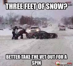 three-feet-of-snow-funny-meme-pics   Bajiroo.com via Relatably.com