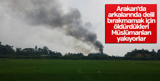 Arakan'da cesetleri yakarak yok ediyorlar