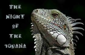 discount password for The Night of the Iguana tickets in Chicago - IL (The Artistic Home)