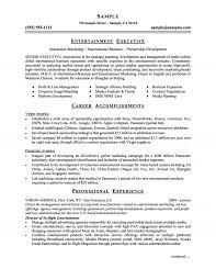 media s account executive resume executive product development u amp marketing resume marketing sample resume executive product development u amp marketing resume marketing sample resume