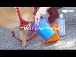 How To Make A <b>Portable Dog Paw Washer</b> | Cuteness