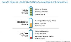 the new leader profile training magazine high growth skills where experience translates into strength driving for results inspiring excellence and leading teams