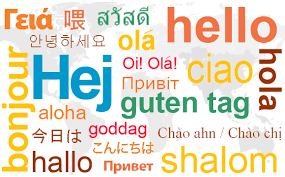 Image result for languages