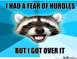 Lame Pun Coon Memes. Best Collection of Funny Lame Pun Coon Pictures via Relatably.com