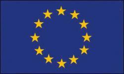 Flag of Euro