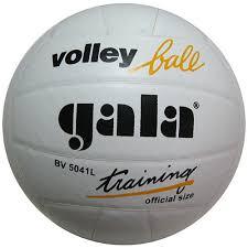 <b>Мяч волейбольный Gala Training</b> (натуральная кожа) купить в ...