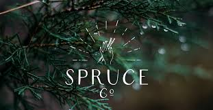 green bathroom screen shot: spruce supply co would be a beauty subscription box delivering quality handmade bath products to