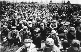 「1966年 - 交通ゼネラル・ストライキ」の画像検索結果
