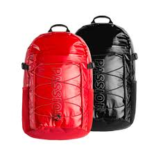 <b>Рюкзак IGNITE Sports</b> Fashion Backpack (красный)