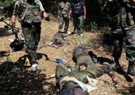 Image result for هلاکت 300 تروریست و آزادسازی 12 روستا تازهترین دستاورد نیروهای مسلح عراق