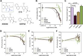 Peptidomimetic Small Molecules Disrupt Type IV Secretion System ...