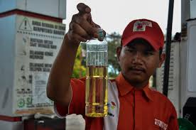 As palm oil for biofuel rises in <b>Southeast Asia</b>, <b>tropical</b> ecosystems ...