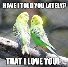 My Funny Memes via Relatably.com