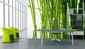 amazing wall mural for office interior with natural amazing office plants