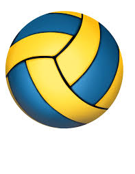 Image result for volly ball