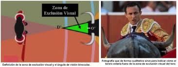 Resultado de imagen de la visión del toro de lidia