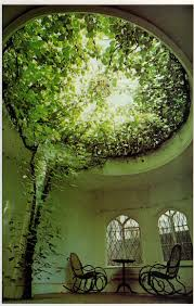 1000 images about this must be the place on pinterest free people hanging plants and bohemian homes allowing natural light fill