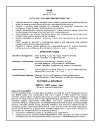 resume sample it consultant cipanewsletter management consulting resume example for executive it functional