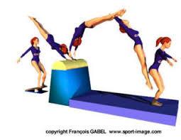 """Résultat de recherche d'images pour """"gymnastique artistique débutant"""""""