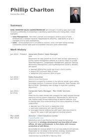 District Sales Manager Resume Samples   VisualCV Resume Samples     VisualCV