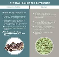 Organic Turkey Tail Mushroom Extract Powder, Vegan ... - Amazon.com