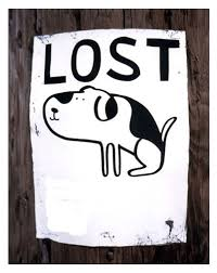 Image result for lost dog