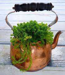 An old copper <b>tea pot</b>. If you use <b>metal</b> containers for plants, it's best ...