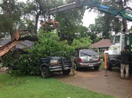 fill out the form for a estimate of tree services offered by if you would like a estimate from sosa tree service for grand prairie tx and the surrounding dallas fort worth area please leave us a detailed