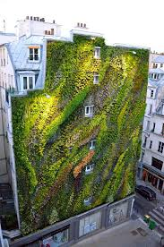 green wall plants luxury home design amazing flowers and different kind of bushes can be plant as well a stunning l