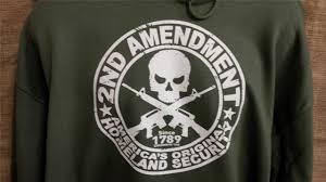 Image result for nra gun 2nd amendment images