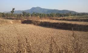 dantewada thoughtso s weblog the treacherous terrain which belongs to latehar s katiya forests photo jugal r purohit