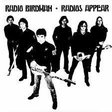 <b>Radio Birdman Radios</b> Appear
