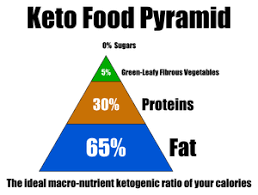 Image result for ketosis