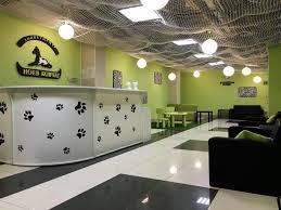 <b>Ноев ковчег</b>, ветеринарный центр в Новосибирске на метро ...