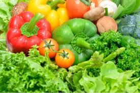 Resultado de imagem para fotos de verduras e legumes