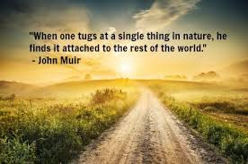 10 Quotes About Nature for Earth Day | John Muir, Earth Day and Nature via Relatably.com