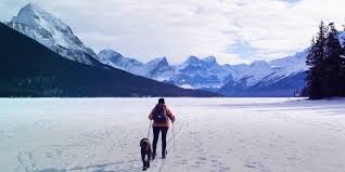 Как выбрать беговые лыжи, <b>ботинки</b> и палки - Лайфхакер