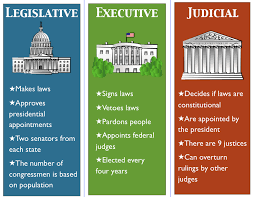 common law essay example